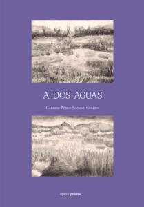 A dos aguas - Carmen Pérez-Seoane Cullen